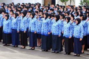 Rekrutmen ASN dan PPPK 2021, Pemerintah Sediakan 1,3 Juta Formasi