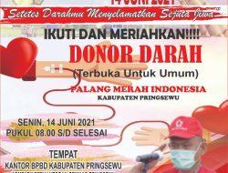 Hari Donor Darah Sedunia PMI Kabupaten Pringsewu Adakan Sedekah Darah